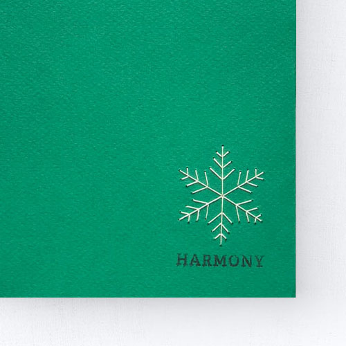 NewYear-Harmony-zoomin